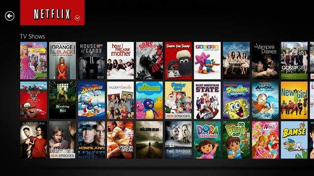 Netflix hr