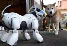 robot-pas