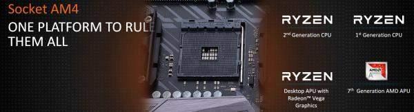 socket am4