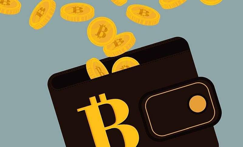 Bitcoin Wallet Chip