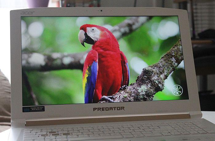 Acer Predator Helios 300 ekran