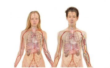 Google Maps of the Body