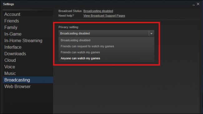Steam BROADCASTING PLAY GAME