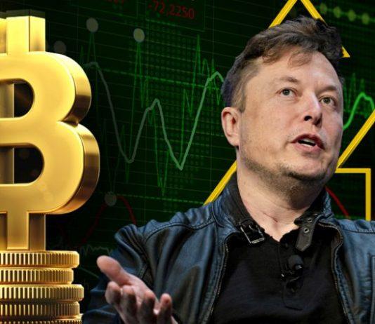 Elon-Musk-Bitcoin
