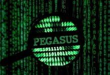 Pegasus-softver